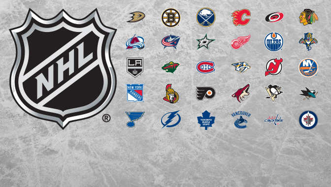 NHL-2013-team-DL