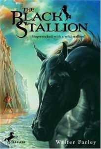 Black Stallion Cover