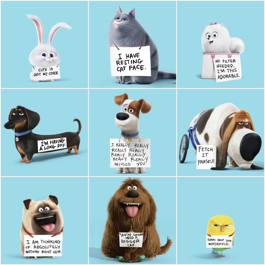 Secret Life of Pets Collage